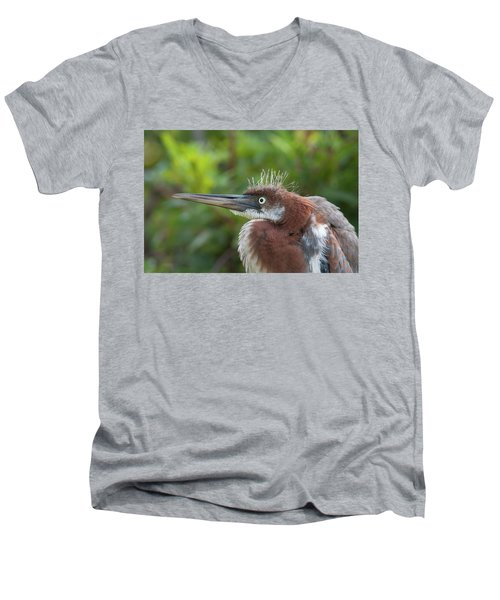 Tricolored Heron - Bad Hair Day Men's V-Neck T-Shirt
