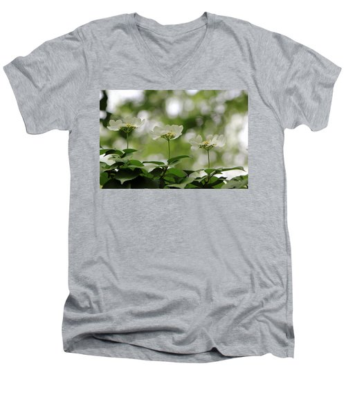 Triplets Men's V-Neck T-Shirt