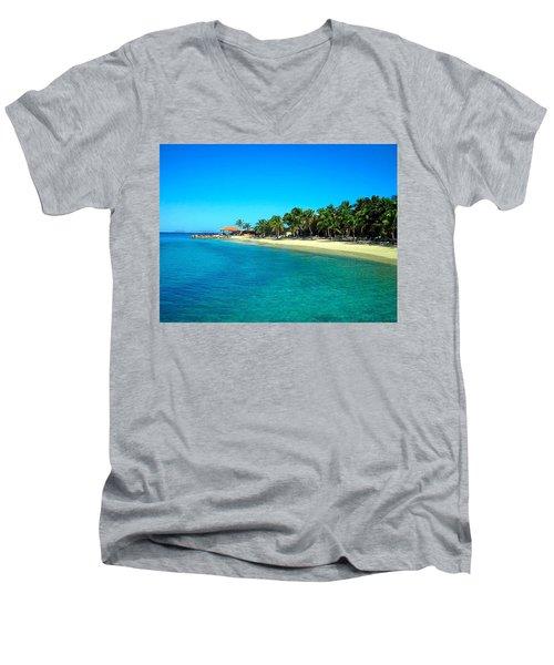 Tropical Bliss Men's V-Neck T-Shirt by Betty Buller Whitehead