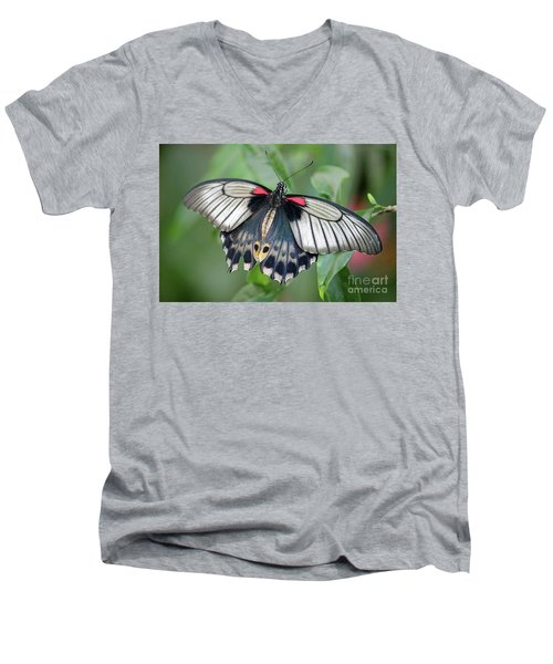 Tropical Butterfly Men's V-Neck T-Shirt