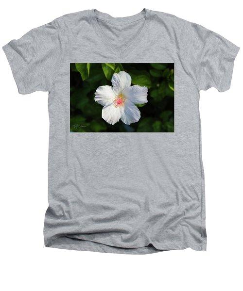 Tropical Flower 2 Men's V-Neck T-Shirt