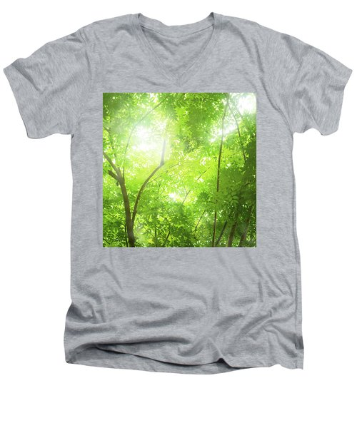 Tropical Forest Men's V-Neck T-Shirt