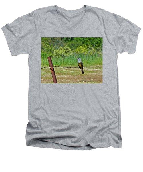 Tropical Kingbird Men's V-Neck T-Shirt