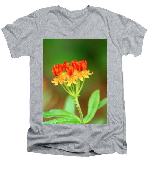 Tropical Milkweed Men's V-Neck T-Shirt