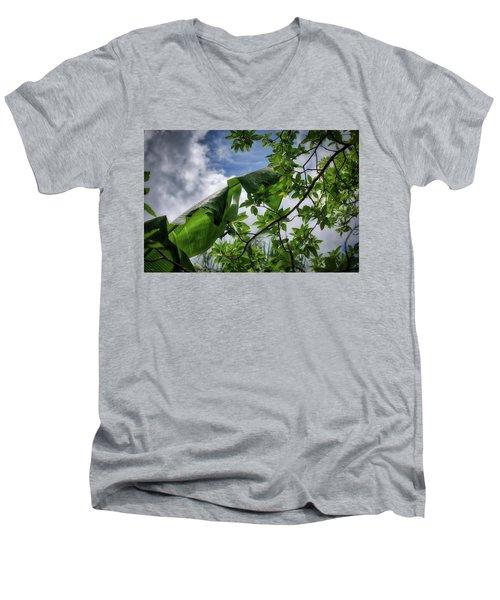 Tropical Sky Men's V-Neck T-Shirt