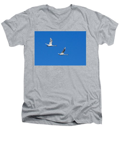 Trumpeter Swan 1727 Men's V-Neck T-Shirt by Michael Peychich