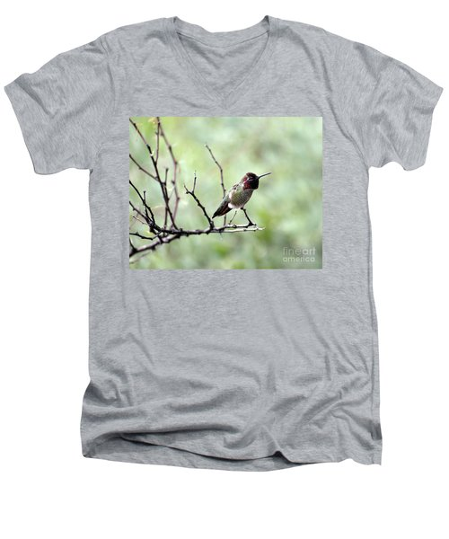 Trumpeting Hummingbird Men's V-Neck T-Shirt