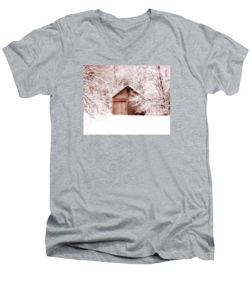 Tucked Away Men's V-Neck T-Shirt