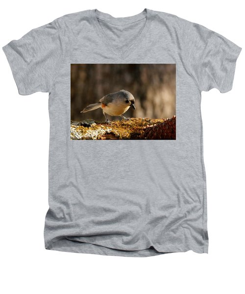 Tufted Titmouse In Fall Men's V-Neck T-Shirt by Sheila Brown