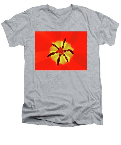 Tulip Men's V-Neck T-Shirt by Bernhart Hochleitner