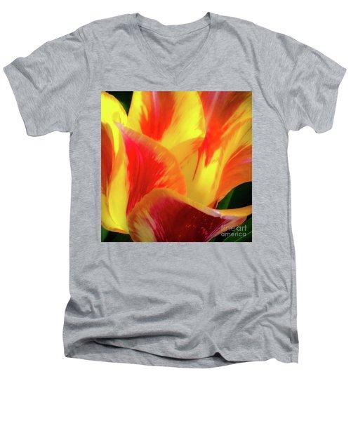 Tulip In Bloom Men's V-Neck T-Shirt