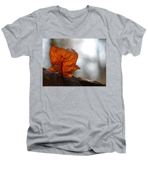 Men's V-Neck T-Shirt featuring the photograph Tulip Leaf  by Jane Ford