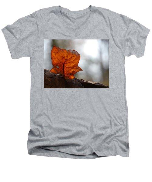 Tulip Leaf  Men's V-Neck T-Shirt by Jane Ford