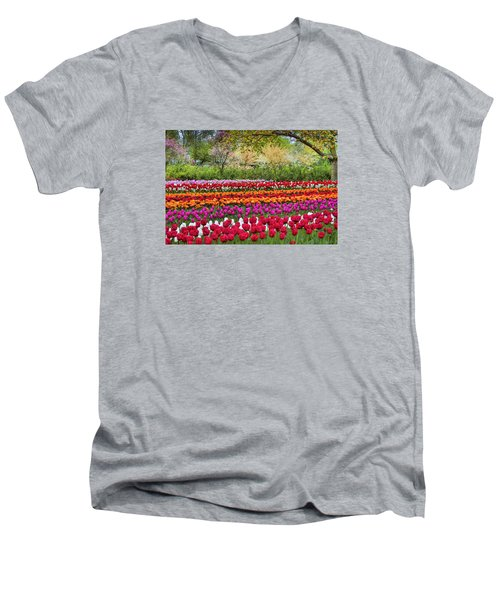 Tulip Mania Men's V-Neck T-Shirt