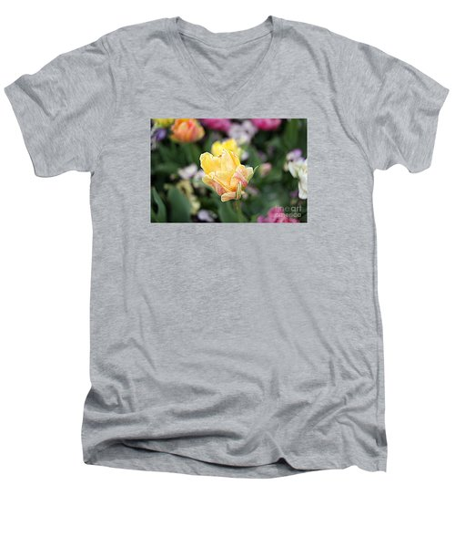 Men's V-Neck T-Shirt featuring the photograph Tulips by Diana Mary Sharpton