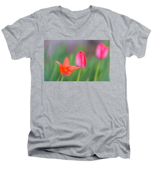 Tulips In My Garden Men's V-Neck T-Shirt by Rainer Kersten