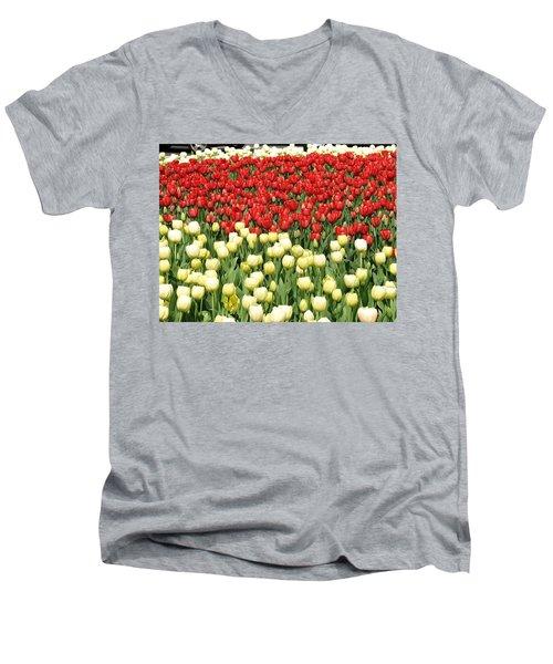 Tulips Of Spring Men's V-Neck T-Shirt by Christopher Woods