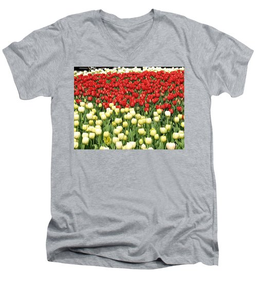 Tulips Of Spring Men's V-Neck T-Shirt