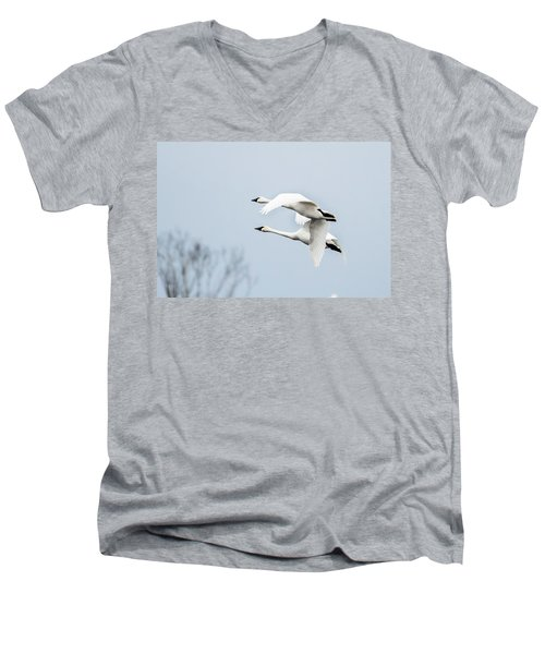 Tundra Swan Lift-off Men's V-Neck T-Shirt