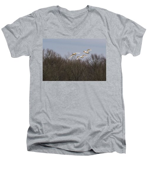 Tundra Swan Trio Men's V-Neck T-Shirt