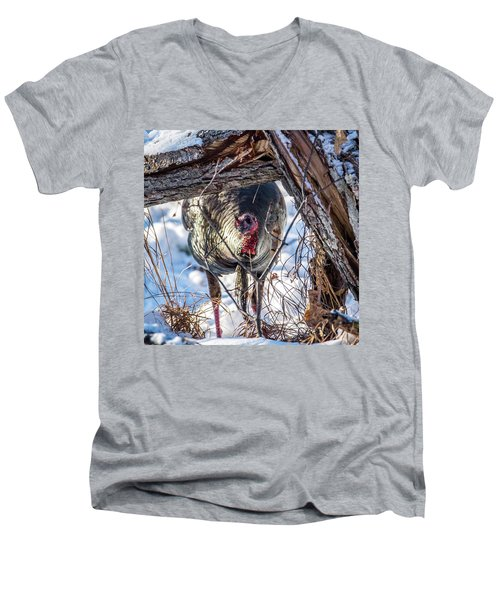Men's V-Neck T-Shirt featuring the photograph Turkey In The Brush by Paul Freidlund