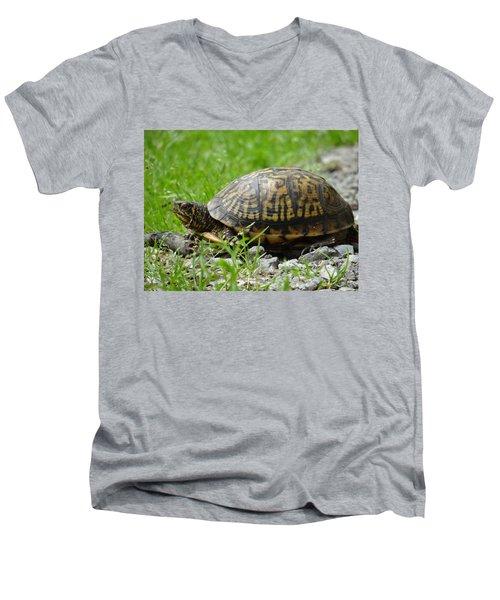 Turtle Crossing Men's V-Neck T-Shirt