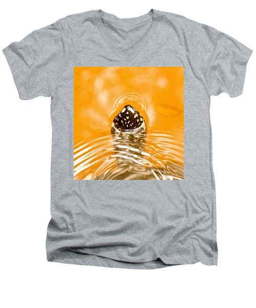 Turtle Men's V-Neck T-Shirt