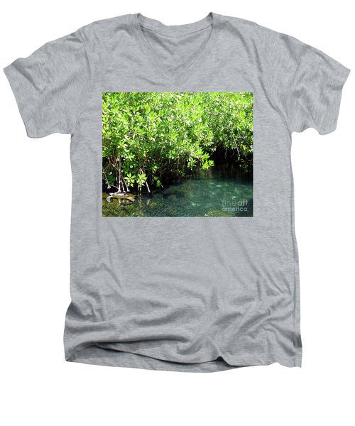 Men's V-Neck T-Shirt featuring the photograph Turtle Swim by Francesca Mackenney