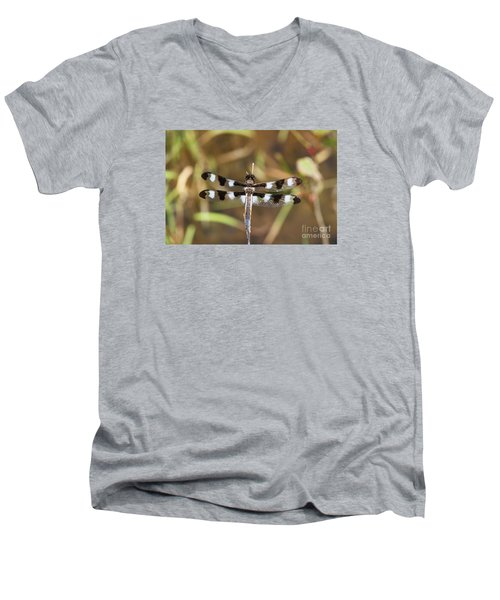Twelve-spotted Skimmer Men's V-Neck T-Shirt
