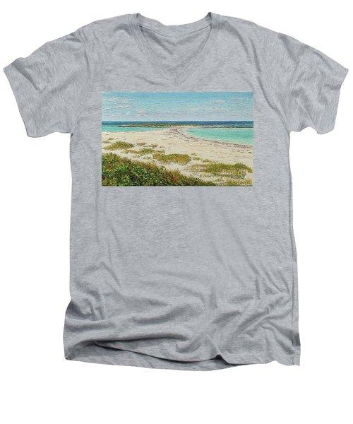 Twin Cove Men's V-Neck T-Shirt