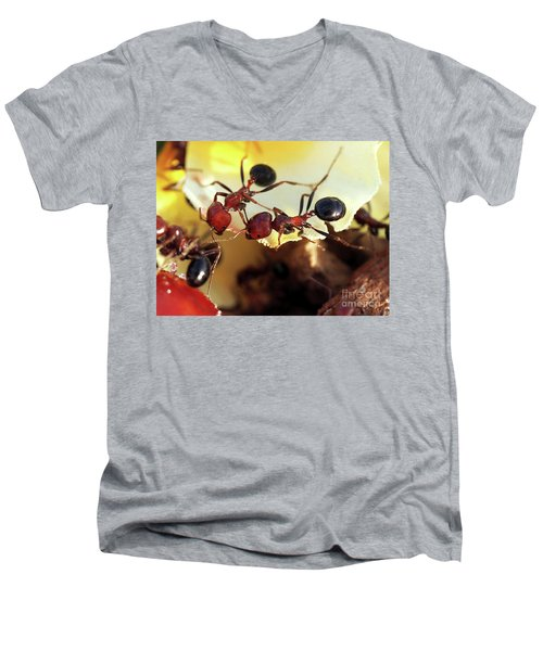 Two Ants In Sunny Day Men's V-Neck T-Shirt