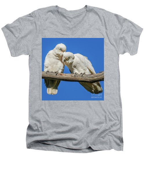 Two Corellas Men's V-Neck T-Shirt