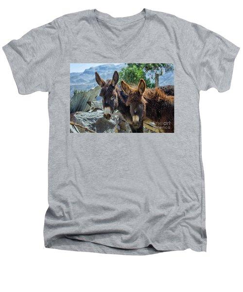 Two Donkeys Men's V-Neck T-Shirt