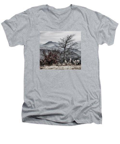 Men's V-Neck T-Shirt featuring the photograph Two by Hayato Matsumoto