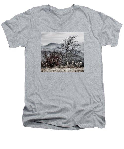 Two Men's V-Neck T-Shirt