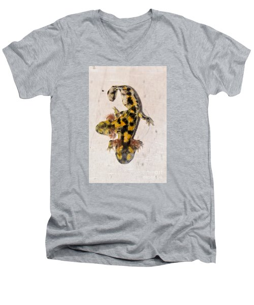 Two-headed Near Eastern Fire Salamande Men's V-Neck T-Shirt by Shay Levy