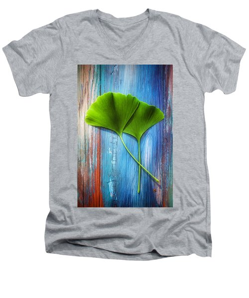 Two Leaves Of Ginkgo Biloba Men's V-Neck T-Shirt