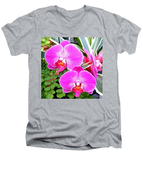 Two Orchids Men's V-Neck T-Shirt