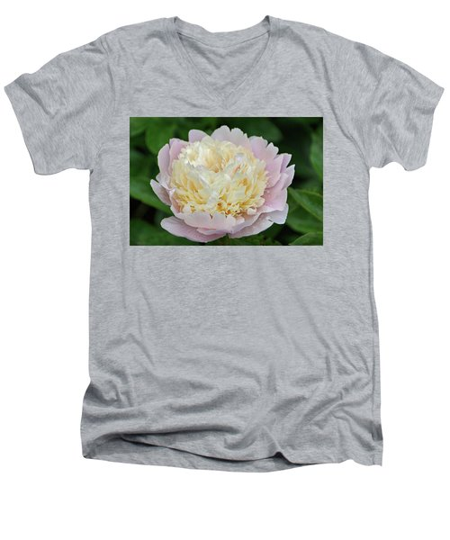 Men's V-Neck T-Shirt featuring the photograph Two-toned by Sandy Keeton