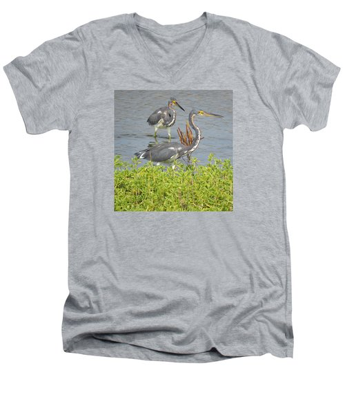 Men's V-Neck T-Shirt featuring the photograph Two Tri Colored Herons by Phyllis Beiser