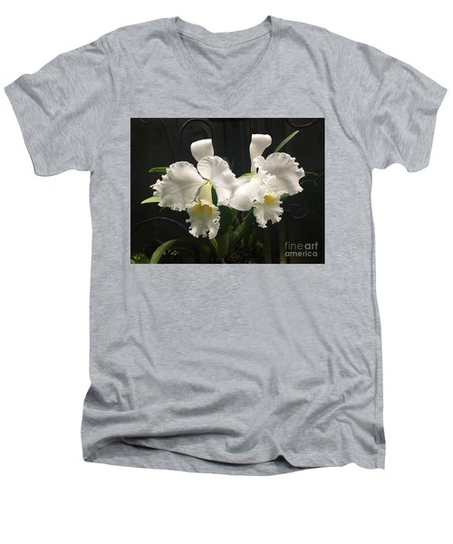 Two White Orchids Men's V-Neck T-Shirt