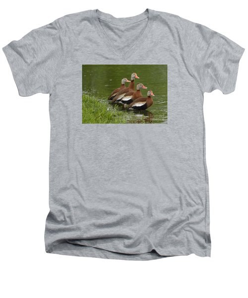 Unexpected Visitors Men's V-Neck T-Shirt by Randy Bodkins
