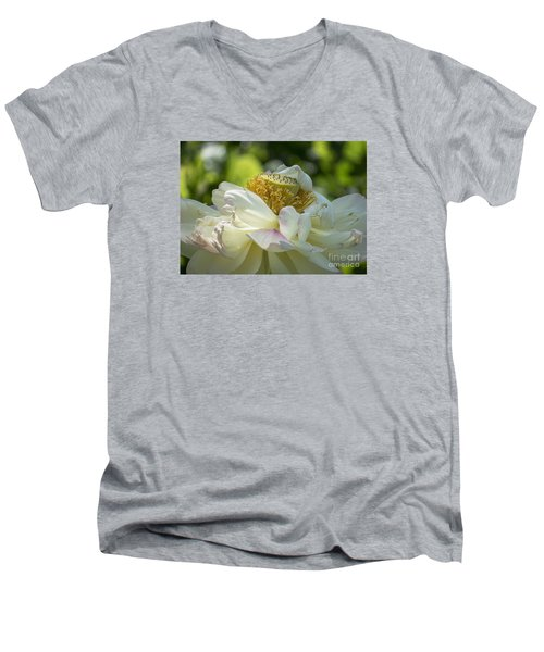 Unfurling Men's V-Neck T-Shirt