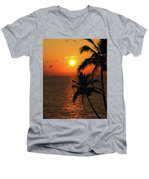 Unknown Paradise Men's V-Neck T-Shirt