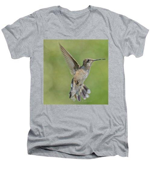 Untitled Hum_bird_four Men's V-Neck T-Shirt