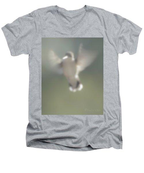 Untitled Hummingbird Men's V-Neck T-Shirt