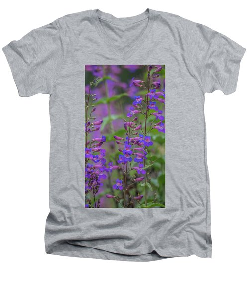 Up Close And Personal With Beauty Men's V-Neck T-Shirt