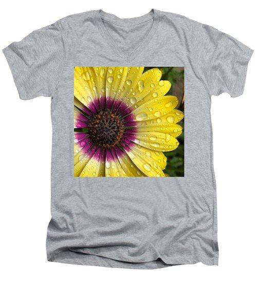 Daisy Up Close  Men's V-Neck T-Shirt