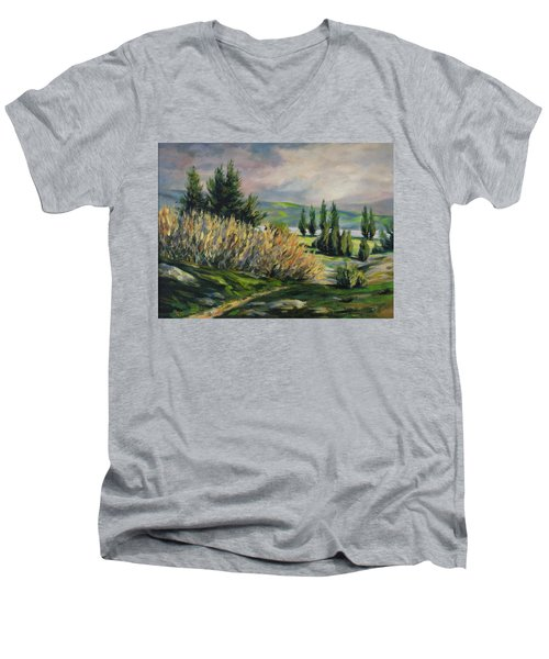 Valleyo Men's V-Neck T-Shirt by Rick Nederlof