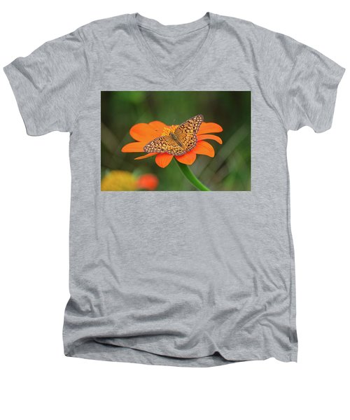 Variegated Fritillary On Flower Men's V-Neck T-Shirt by Ronda Ryan